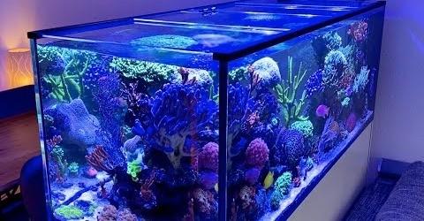 3D Druck Glasabdeckung für Aquarium oder Terrarium